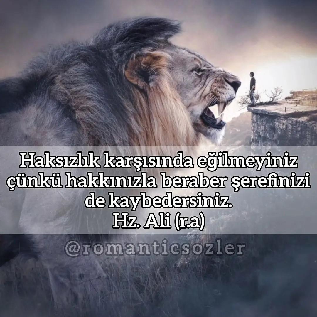Haksızlık karşısında eğilmeyiniz çünkü hakkınızla beraber şerefinizi de kaybedersiniz. Hz. Ali (r.a)