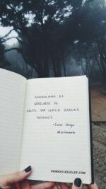 resimli romantik sözler